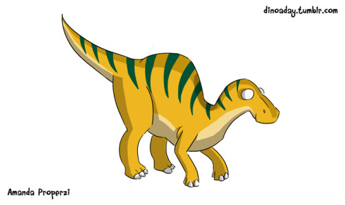 "Edmontosaurus (""Edmonton Lizard"") Lived: The late Cretaceous period. Size: 13 meters and 4 metric tons. About: This dinosaur was among the last large dinosaurs, along with the Tyrannosaurus Rex, to live on the earth. I like to think about what it would be like if even just one dinosaur, maybe a nice Edmontosaurus, had survived in their ancient forms. It's a herbivore with a toothless, duckbill-shaped mouth that could switch between bipedal and quadrupedal movement. More than likely, these dinosaurs traveled in herds."