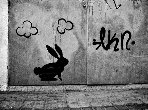 Mr. Rabbit has left the building. /by josep m. ganyet on Flickr