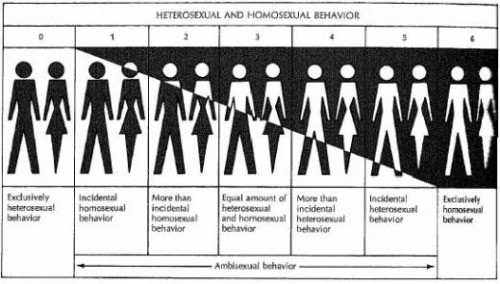 "The Heterosexual-Homosexual Rating Scale (more commonly know as the Kinsey Scale) was developed in 1948 by researchers Alfred Kinsey, Wardell Pomeroy, & Clyde Martin. Asexuality & pansexuality aren't part of the Kinsey scale; however, in both the Male & Female volumes of the Kinsey Reports, ""X"" was used to denote asexuality. ""The world is not to be divided into sheep and goats. Not all things are black nor all things white. It is a fundamental of taxonomy that nature rarely deals with discrete categories. Only the human mind invents categories and tries to force facts into separated pigeon-holes. The living world is a continuum in each and every one of its aspects. The sooner we learn this concerning human sexual behavior the sooner we shall reach a sound understanding of the realities of sex…"" (Kinsey 1948) * The Klein Sexual Orientation Grid, developed by Fritz Klein, expands on Kinsey's scale with seven variables & three situations in time: past, present & ideal."