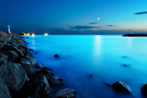 shogunpassion:  Moonlight by David Keochkerian