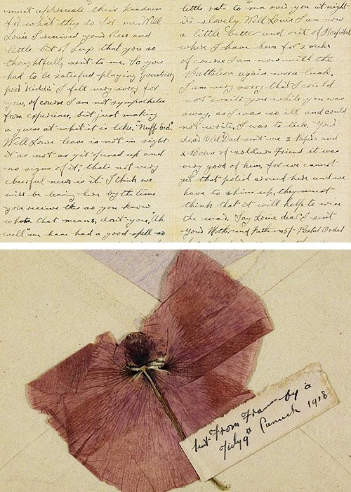 interwar:  Soldier's letter to his wife written while on active service in France and describing the experience as 'hell on Earth'. Enclosed with the letter is a pressed poppy as a souvenir. 10 July, 1918. (x)
