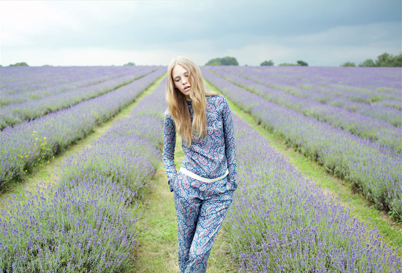 dont mind me im just hanging out in  field of lavenders
