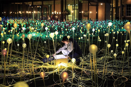 lkworld:  Field of Light- Bruce Munro