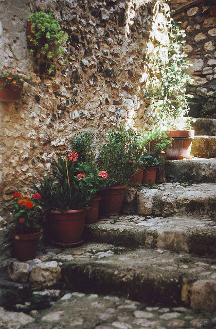 | ♕ |  flowery stairs in Casperia  |  by © Sarah Longworth