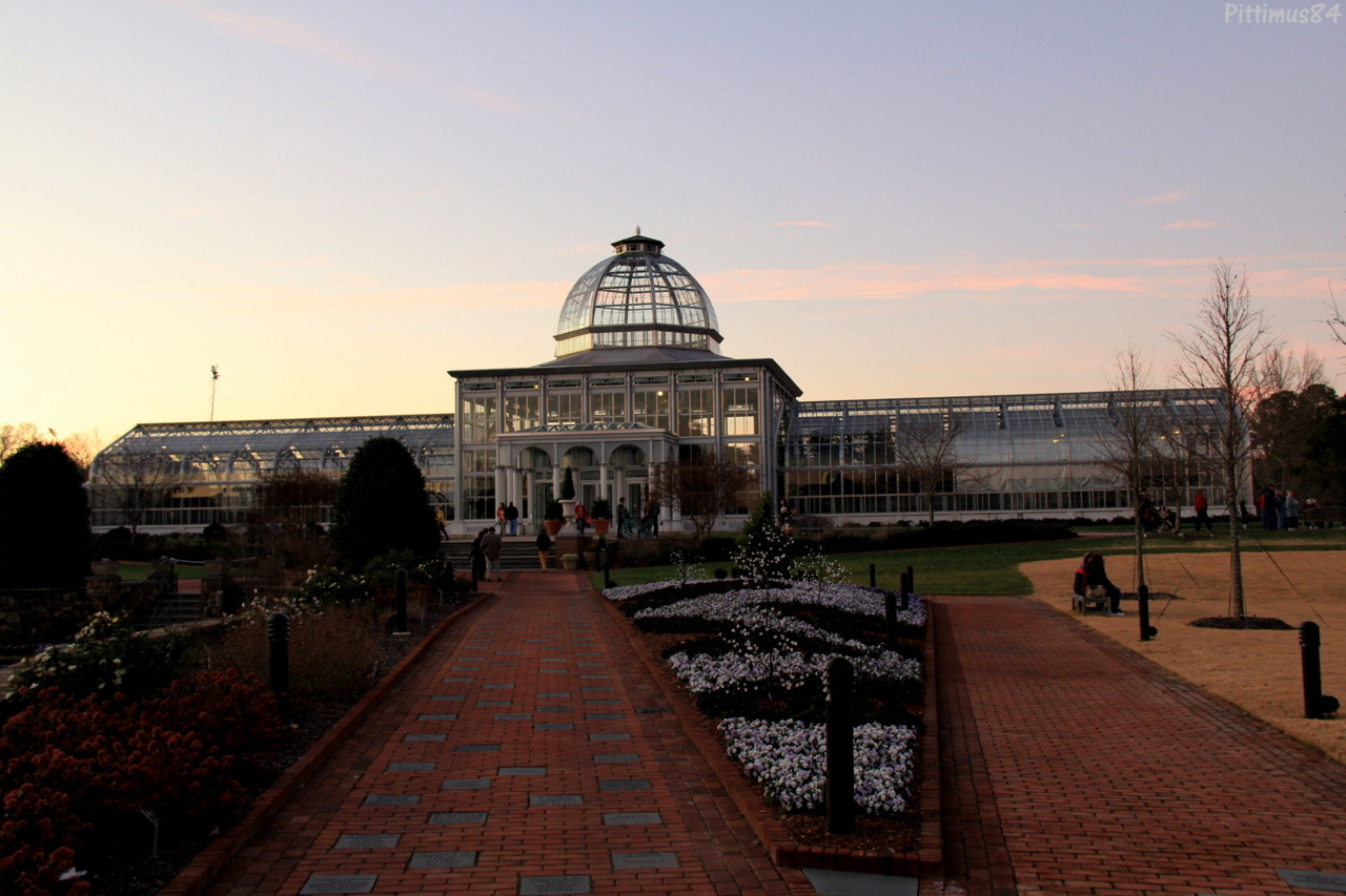"Lewis Ginter Botanical Gardens ""Dominion Gardenfest of Lights"" Illumination  This is 1 of Many pictures."