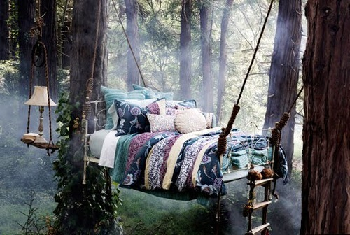 bluepueblo:  Forest Tree Bed, United Kingdom photo by timwalker