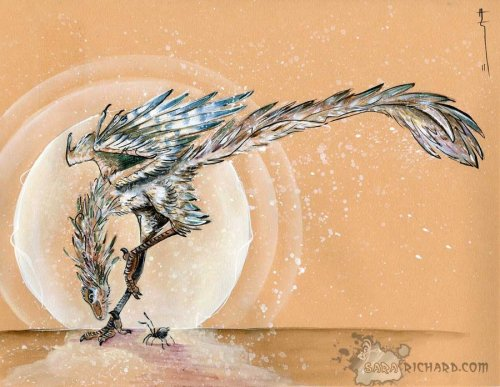 "fuckyeahdinoart:  Archaeopteryx- ""Transition"" by *SaraRichard"