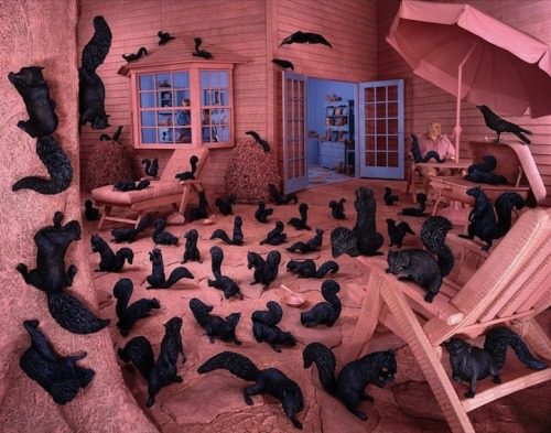 Gathering Paradise by Sandy Skoglund, 1991 [via My Modern Metropolis] While we recognize that these squirrels aren't real, it must be pointed out that, real or not, they are still shockingly naked.