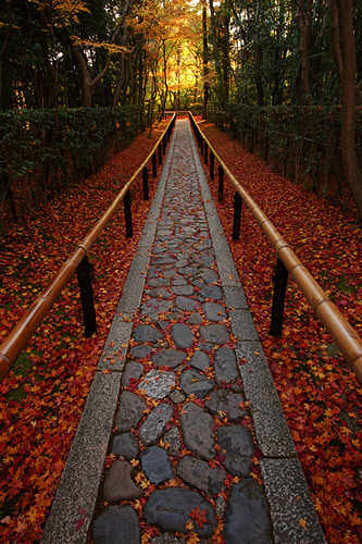 bluepueblo:  Stone Walkway, Kyoto, Japan photo via kessenza