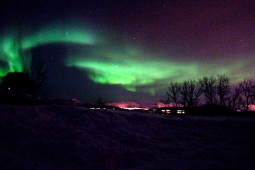 throwingpaintonacanvas:  Northern lights in Tromso, Norway. Taken while camping in the snow. © Pier Nirandara -Backpacking, Hiking, & Camping Gear