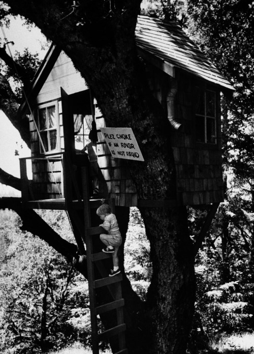 A young boy climbing up a replica of Winnie the Pooh's treehouse. Photograph by John Brenneis. USA, June 1960.