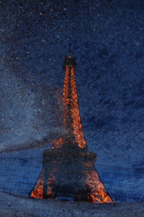 Eiffel Tower in a Puddle by Ben Cohen