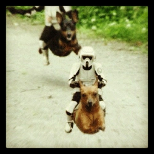 This economy is even forcing the Empire to make cutbacks:  (Taken with instagram)