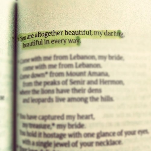 consurgo:  Song of Solomon 4:7