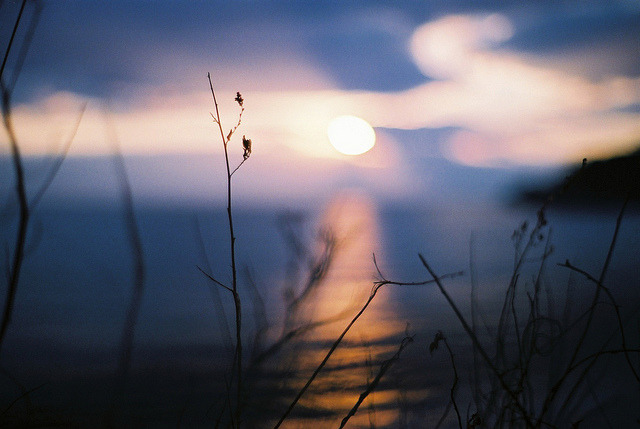 last sunset by breeze.kaze on Flickr.