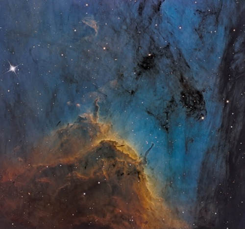 Pelican Nebula Close-up Image Credit & Copyright: Martin Pugh