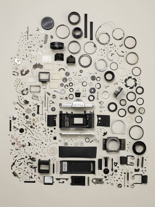 thingsorganizedneatly:  Todd McLellan
