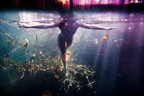 "neilcraver:  Pollux Awards 2011 The Worldwide Photography Gala Awards announces the overall winners and awardees of the 2011 WPGA Annual Pollux Awards. 20,320 images were received from 72 countries, in 6 monthly consecutive contests, whose results were merged to select the overall awardees. Awarded works will be invited to exhibit their works at The Palais de Glace in Buenos Aires, from January 19th to February 15th, 2012.  I'm so excited to be chosen from the thousands of artists to be apart of this show! I only wish i had the money to come visit Buenos Aires to see the show in the incredible The Palais de Glace! To view all the wonderful photographes please check out there website at this link: Pollux Awards 2011 This is the winning image from my nude underwater series ""Omni-Phantasmic""….the piece is entitled ""Dismantling Connections"""