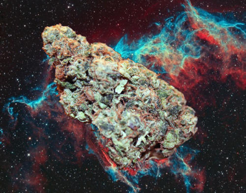 space station marijuana - photo #2