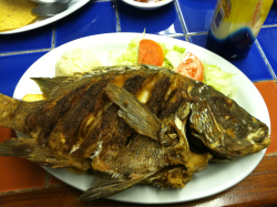 Whole fried fish (mariscos)