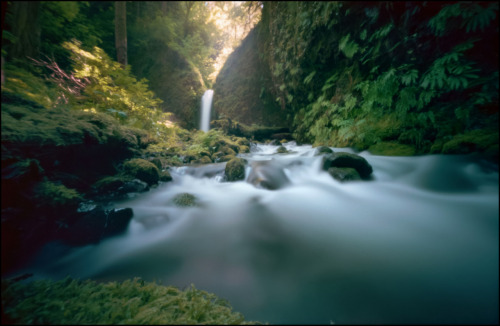 Lower Ruckel Falls Columbia River Gorge 6x9 medium format pinhole