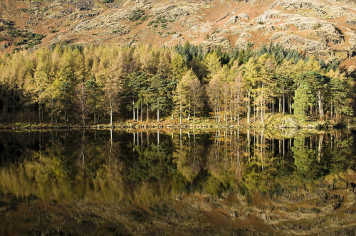 Blea Tarn reflection by stuart3227 on Flickr.