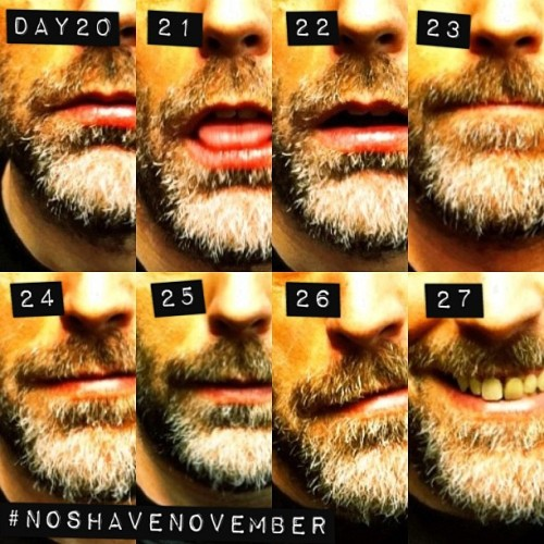 27 down, 3 to go! #NoShaveNovember. Please also see #mouselinkbeard #mouselinkdiptics #noborders (Taken with instagram)