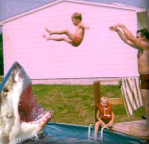 somecallmeaustralia:  counttofournj:  JAWS in the swimming pool  I'm in love with this.