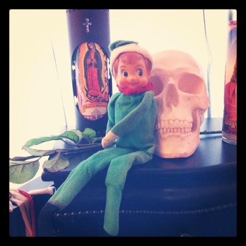 My mom has the #original #Elfonashelf , he's just cruising w/ my #skull 💀🎅 #christmas#elf#shelf#vintage#old (Taken with instagram)