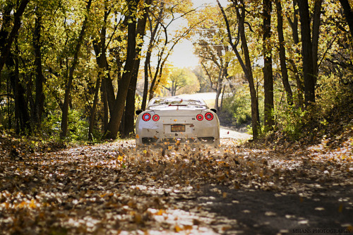 stancenation:  GTR x Fall