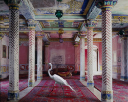 India Song by Karen Knorr via