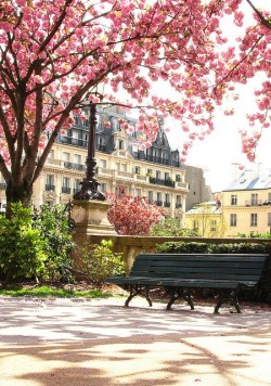 iamblessed:  Paris in Spring… le sigh