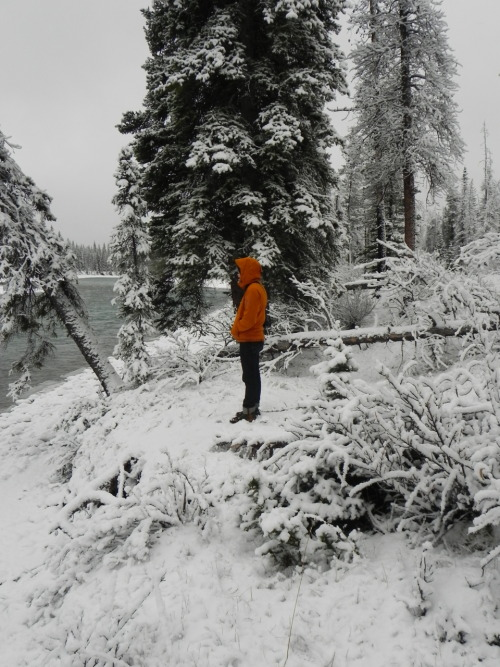 more snow please! Jeremy in Jasper few weeks ago… now its warm again.