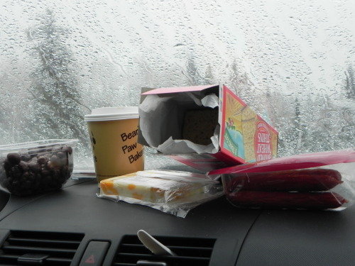 In-car Jasper snacks and paw coffee