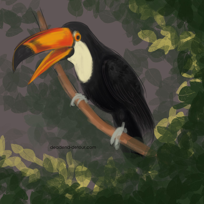 It is a toucan. :O — Kiri