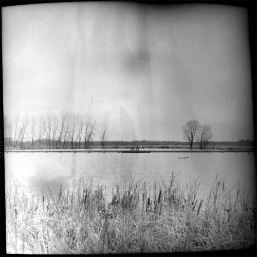 38 best viewed in full. Taken this afternoon on my old TLR, there's a nifty little story behind getting this shot. quick-and-dirty scanned by holding film in my hand in front of a flash umbrella, I really need to get on that whole 'scanner' thing