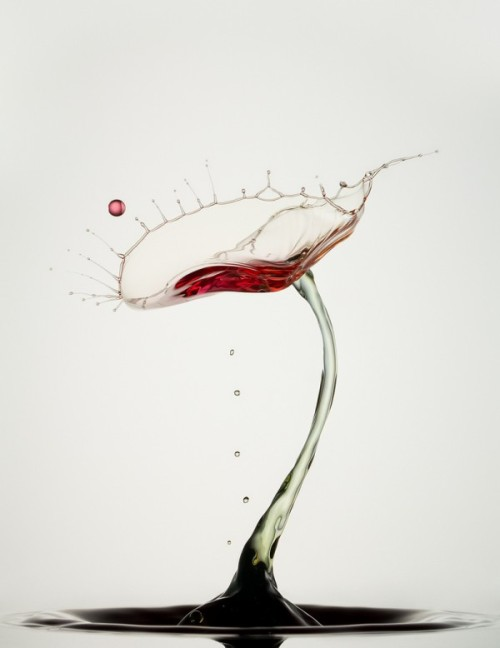 Droplet German photographer Heinz Maier's delicate high speed liquid photographs are NOT digital, believe it or not.Via: Colossal