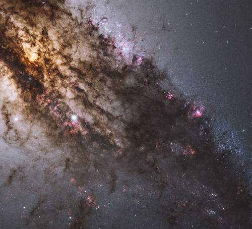 cwnl:  Across the Center of Centaurus A A fantastic jumble of young blue star clusters, gigantic glowing gas clouds, and imposing dark dust lanes surrounds the central region of the active galaxy Centaurus A. This image from the Hubble Space Telescope has been processed to present a natural color picture of this cosmic maelstrom. Image Credit: NASA, ESA, and the Hubble Heritage (STScI/AURA) - ESA/Hubble Collaboration; Acknowledgement: R. O'Connell (U. Virginia)