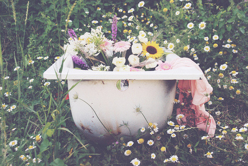 lovely-things-exist:  here, have a tub of flowers