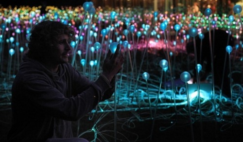 Bruce Munro has fitted 5,000 glass spheres in the grounds of the Holburne Museum in Bath. It is not the first time Munro has indulged his dream of a field of lights. he first created a similar exihibition at the V&A Museum in London in 2004, but has also made other versions including a 10-acre display at Long Knoll Field in Wiltshire and at the Eden Project in Cornwall in 2008/2009. Illuminated Light Bulb Garden by http://www.brucemunro.co.uk/