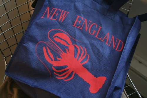 "lobsterfist:  Overheard outside a bar in Philadelphia five months ago: ""Dude, fuckin dude, I got this bag at T.F. Green last week. It says 'New England' and has a fuckin lobster silhouette on it, and I'm gonna take a picture of it and put it up on Lobsterfist. It's gonna be wicked awesome. We're fuckin dominating the internet with this shit."""
