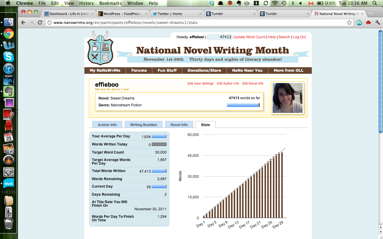 I can't believe how close I am to finishing NaNoWriMo 2011! It's the most exciting thing!