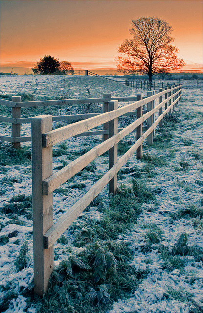 Frosty Fence by Julian Barker on Flickr.