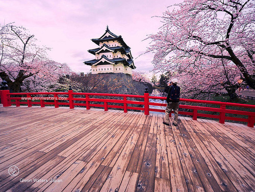 Photography japan strip photo 37