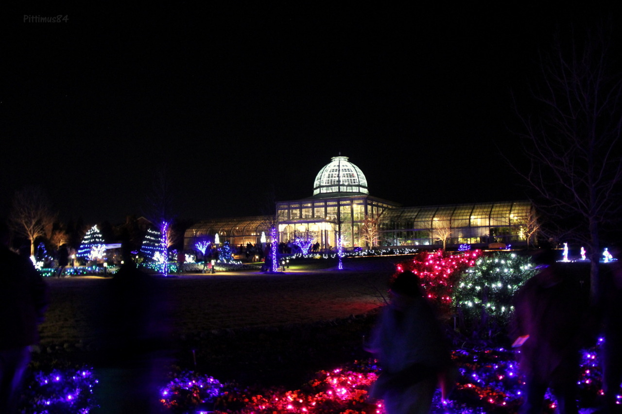 Lewis Ginter, Dominion Gardenfest of lights opening night. Near the apple cider stand shortly before leaving.