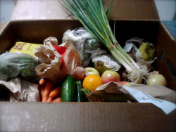 Woohoo! My organic box of fruit and veggies arrived today :) Oh the excitements of being a vegan haha.