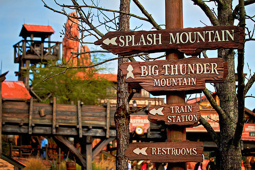 dist0rt-ed:  omg splash mountain is amazing