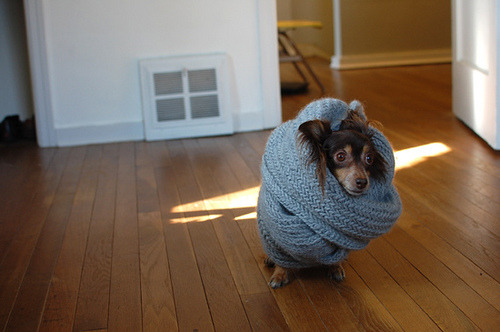 aww, all bundled.