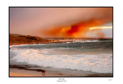 the fire by ~TomMontgomery Western Australia.