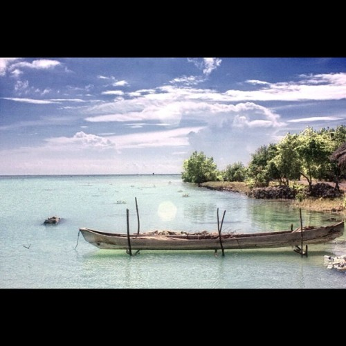 tantipaulanny:  Wakatobi,Indonesia #iphonesia #instago #photo #instagram #ig #wakatobi #indonesia #sea  (Taken with instagram)